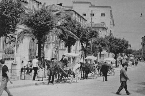 COSENZA 1962